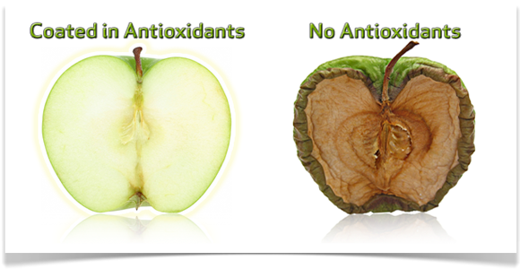 effects of antioxidants